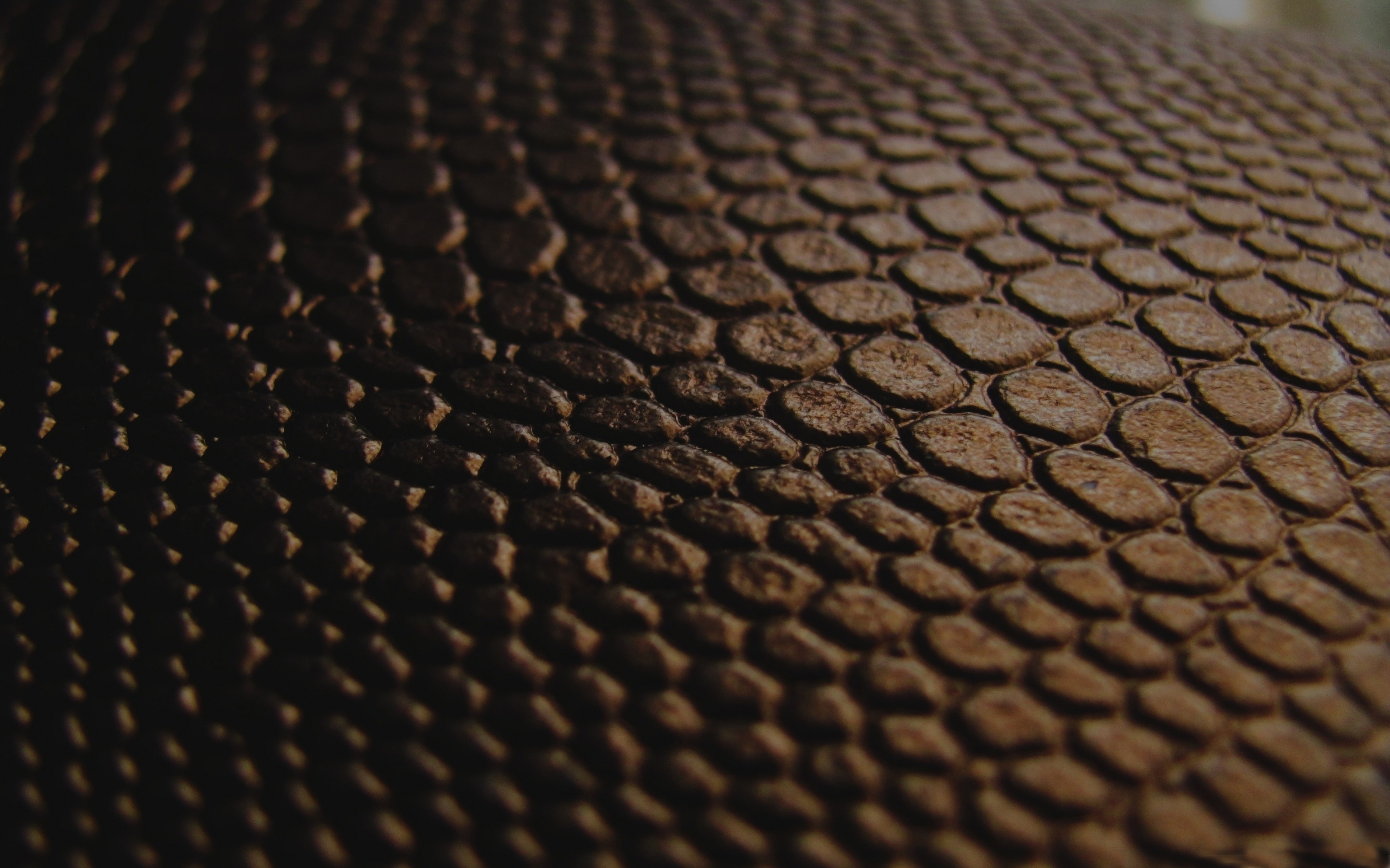 Black Snake Skin Wallpaper 2880x1800