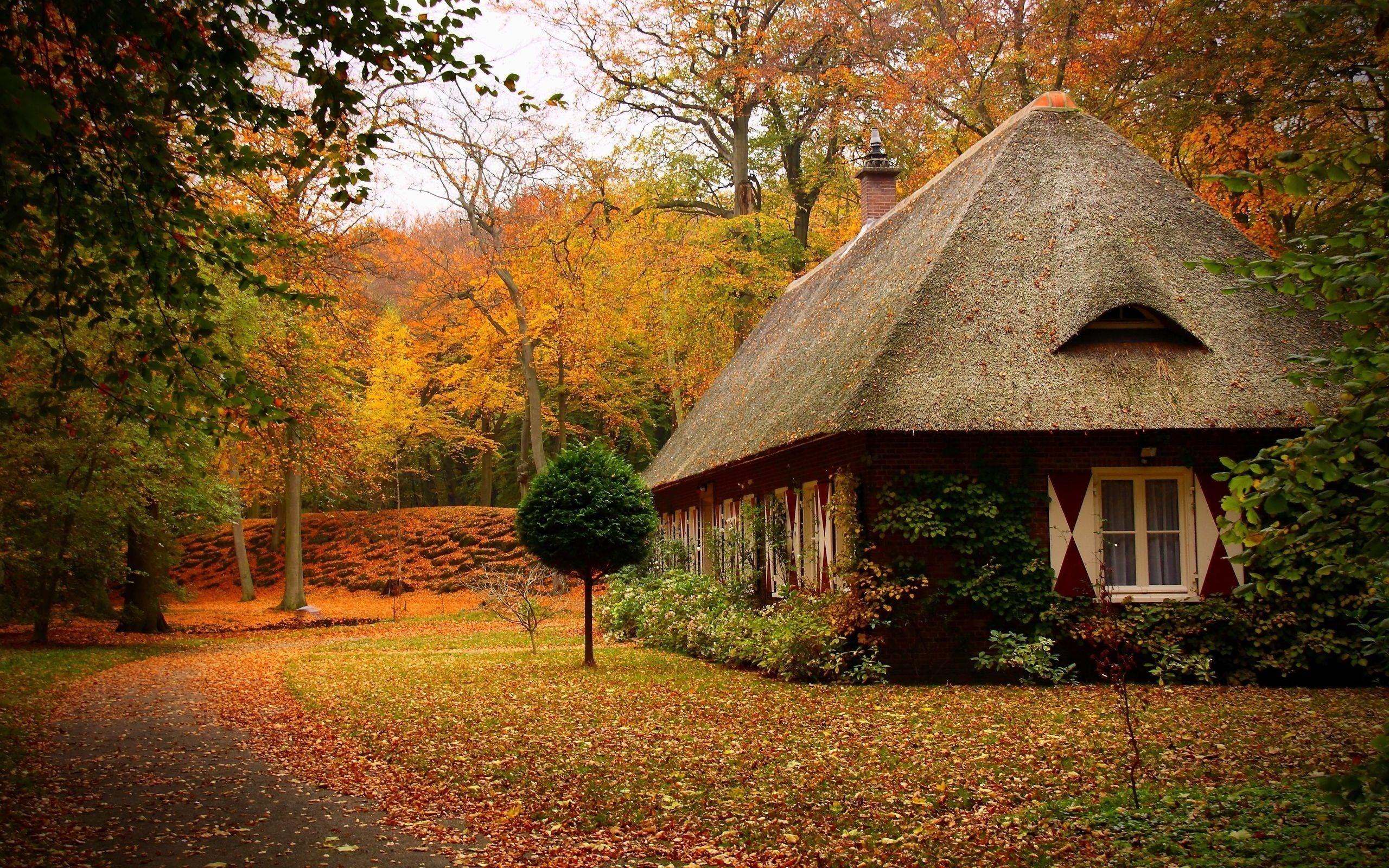 Wallpaper autumn park path leaf house tree forest desktop 2560x1600