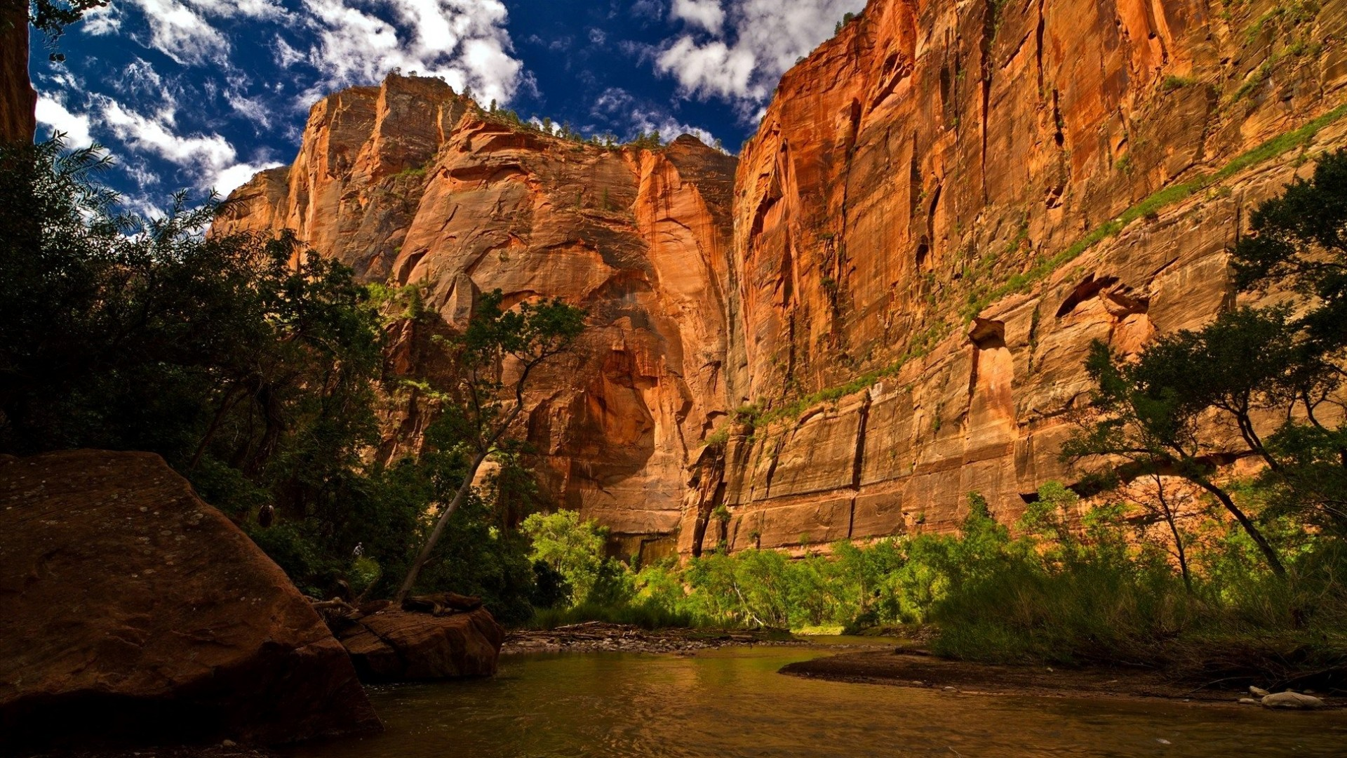 Zion National Park Utah USA wallpaper 10801920 Wallpaper 1920x1080
