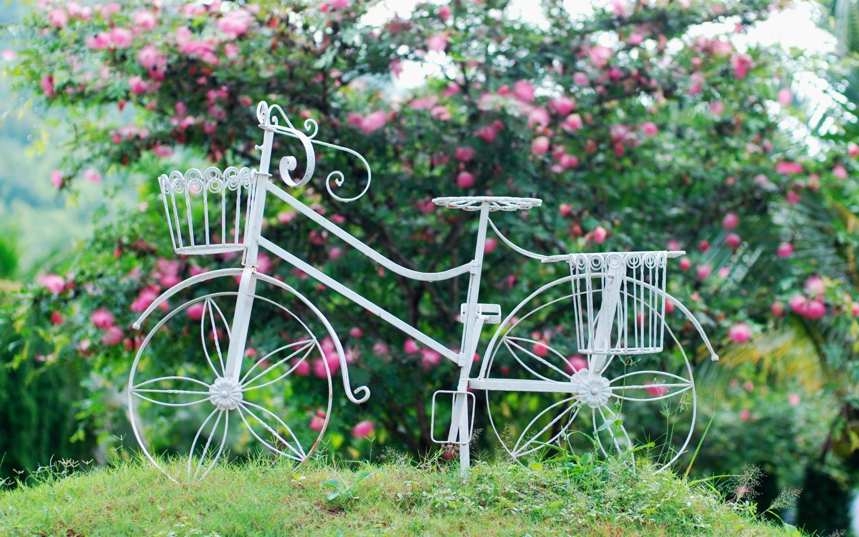 Desktop wallpaper bicycles and flowers wallpapersafari for Decoration jardin velo