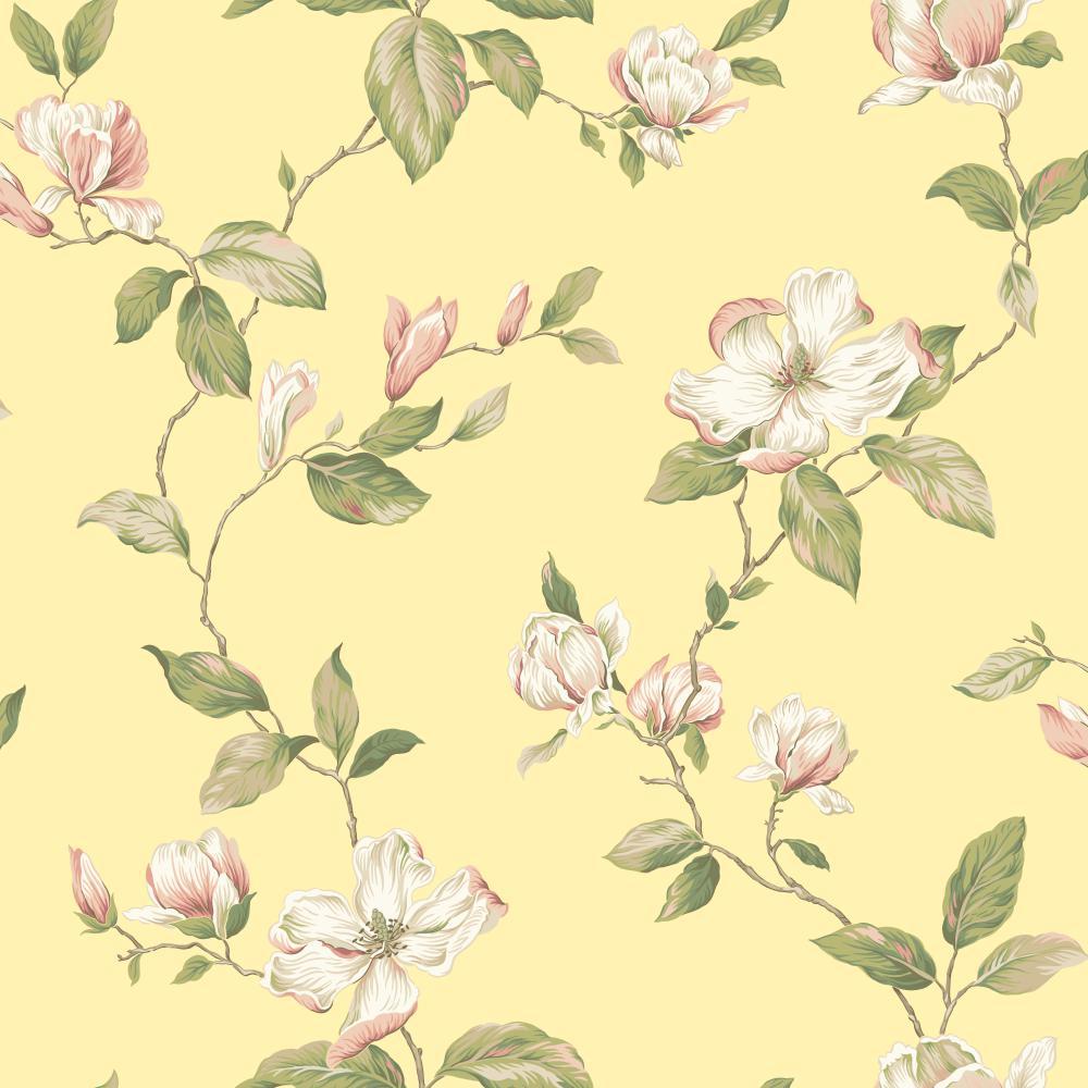 magnolia   Wallpaper Border Wallpaper inccom 1000x1000