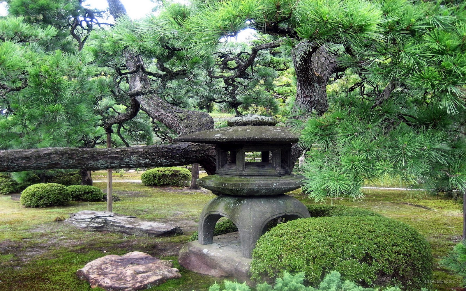 bestofluau Beautiful Japanese Garden wallpapers 1600x1000