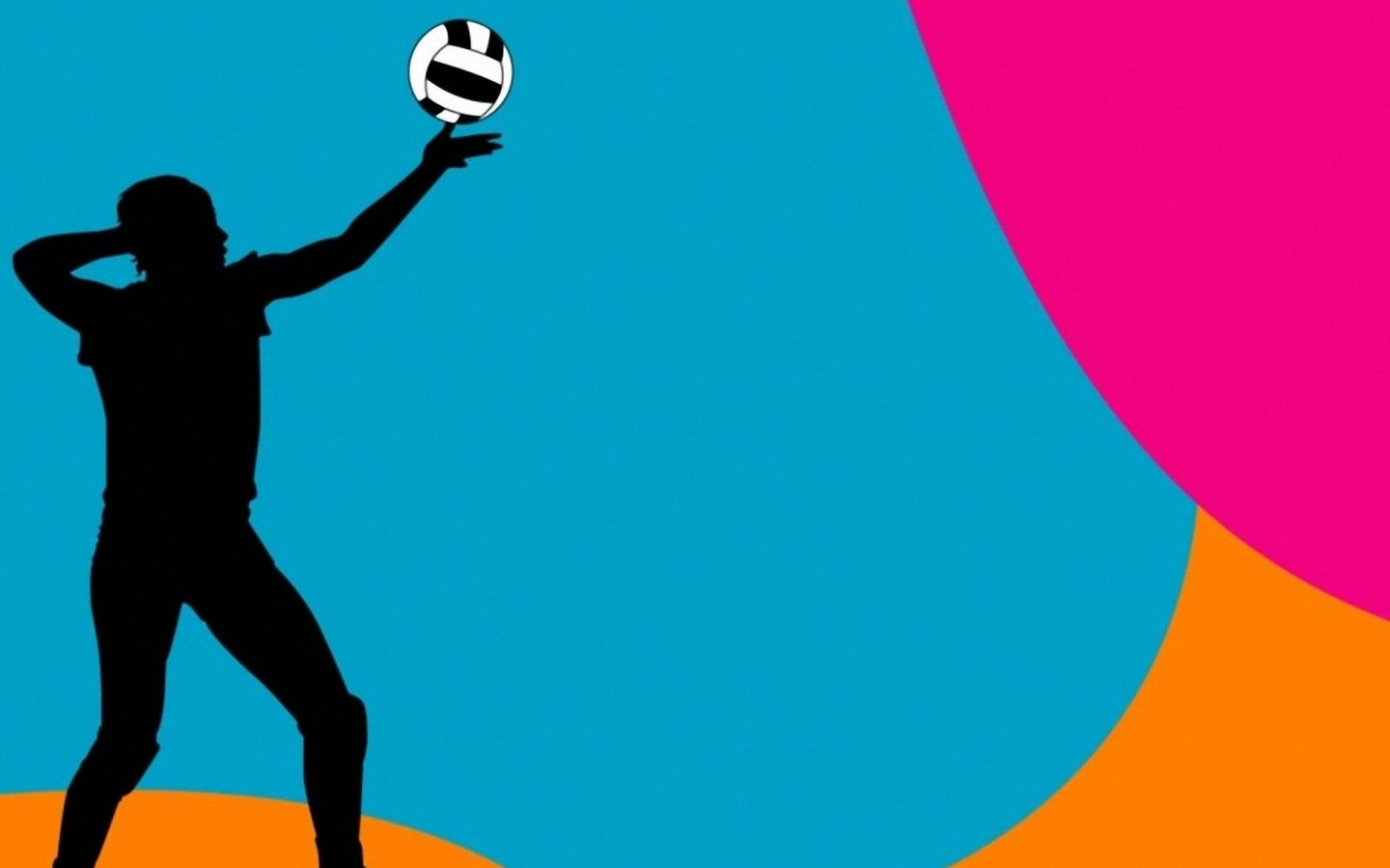 FT48FT Volleyball Photos   Wallpapers and Pictures here 1440x900