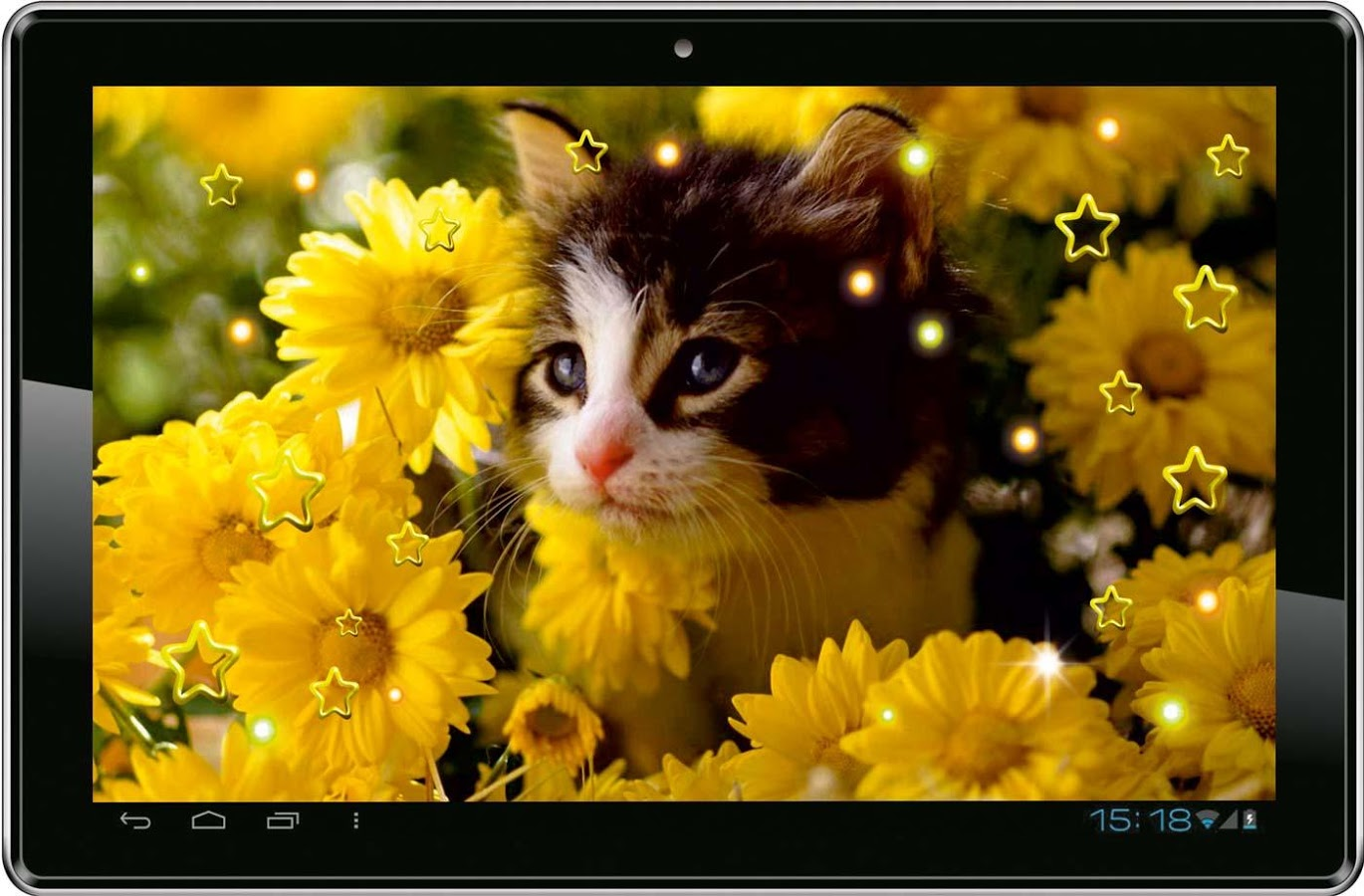 Kitty Sounds live wallpaper   Android Apps on Google Play 1370x900