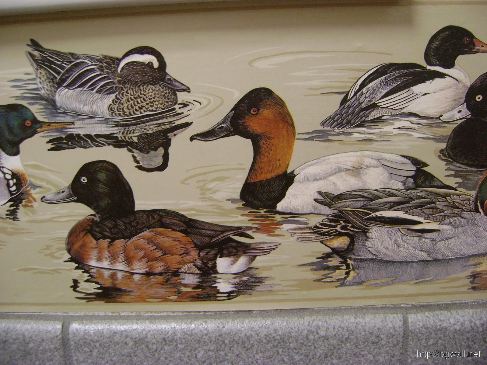 Bird Themed Wallpaper 1600x1200