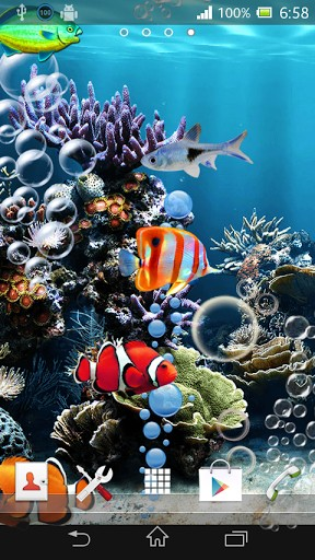 of wallpaper sea constantly effervescent tropical fish swimming 288x512