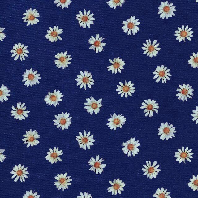 Navy Blue Background White Daisies Print Prints Pinterest 640x640