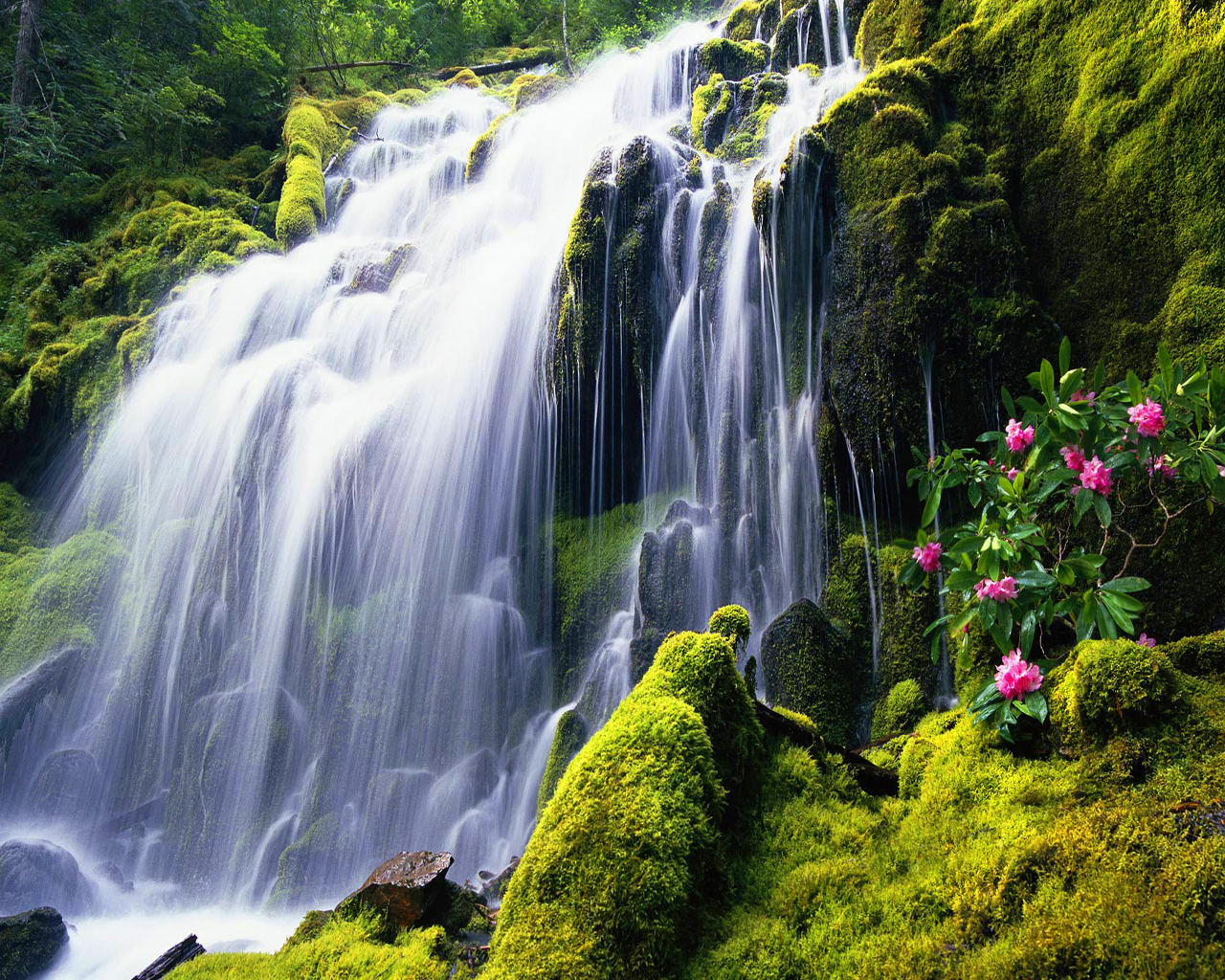 download wallpaper wallpaper waterfall download download 1280x1024