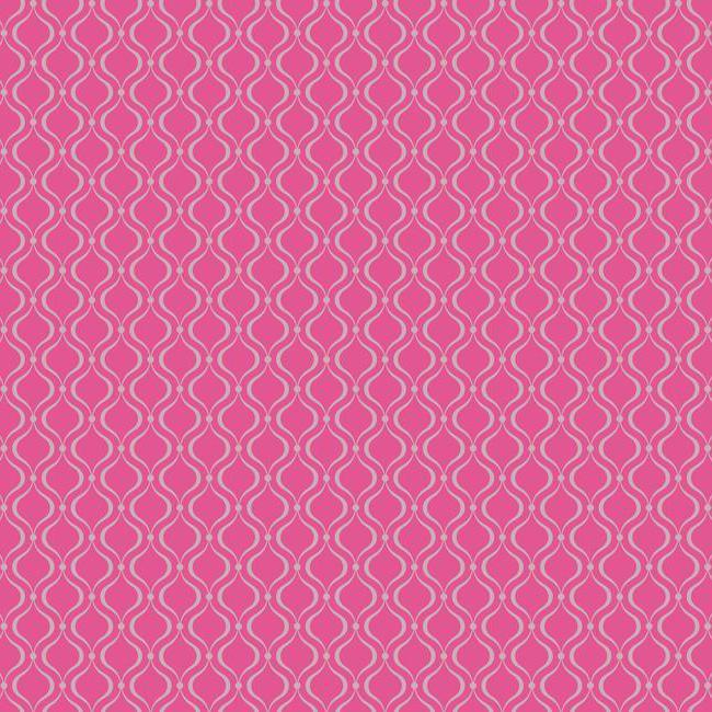 District17 Watermelon Pink Glitter Trellis Wallpaper Wallpaper 650x650