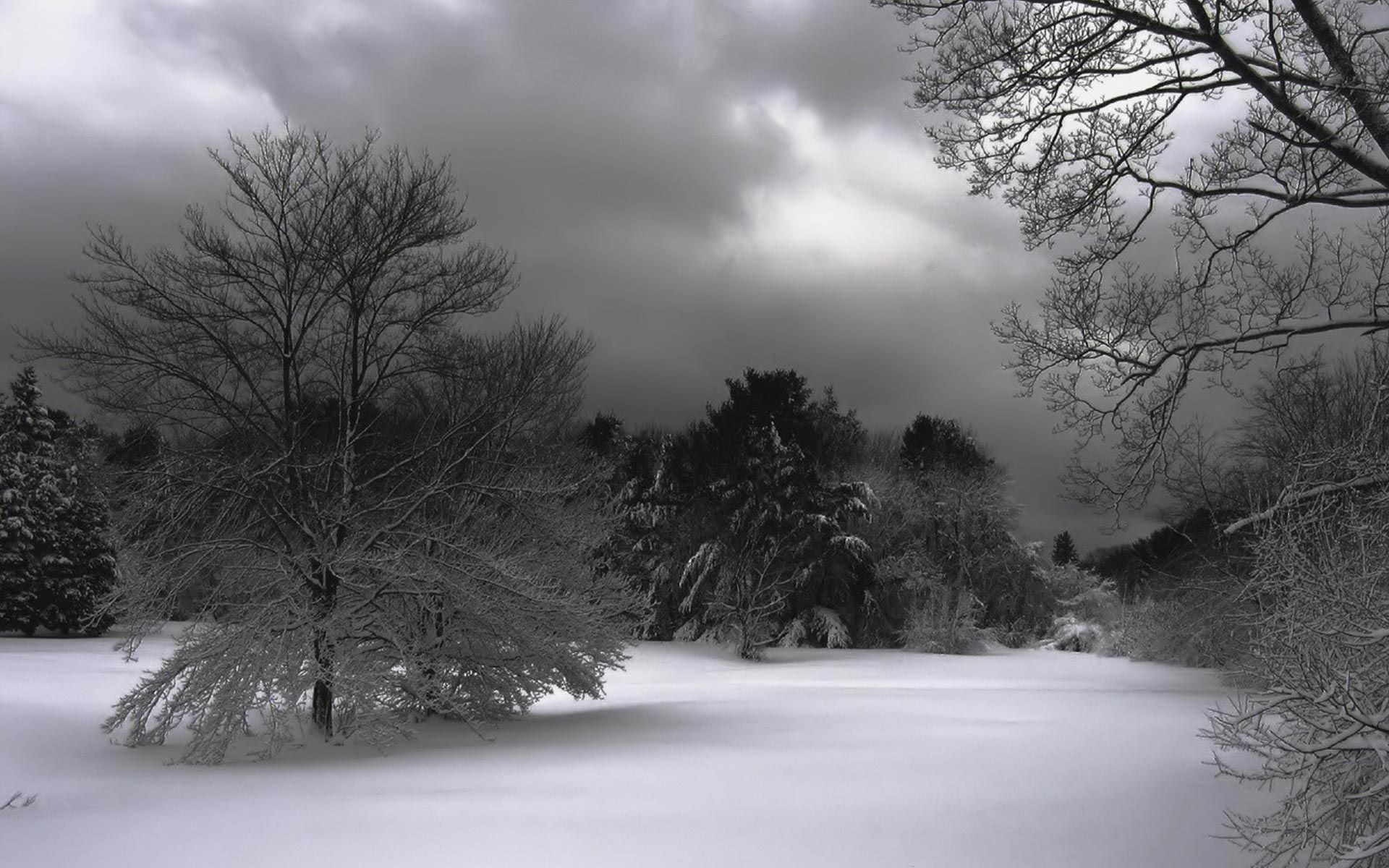 Pond Icy Winter Scene Wallpaper Computer Inspirational All   We 1920x1200