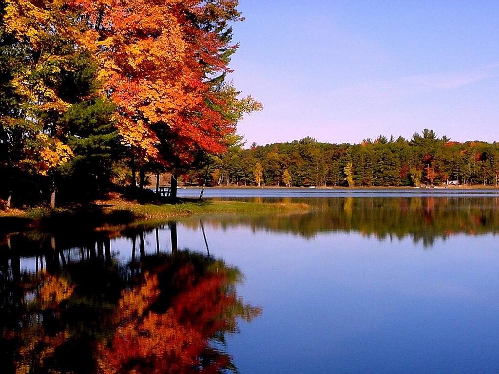 Cute View Autumn Wallpaper raSahealth 1024x768