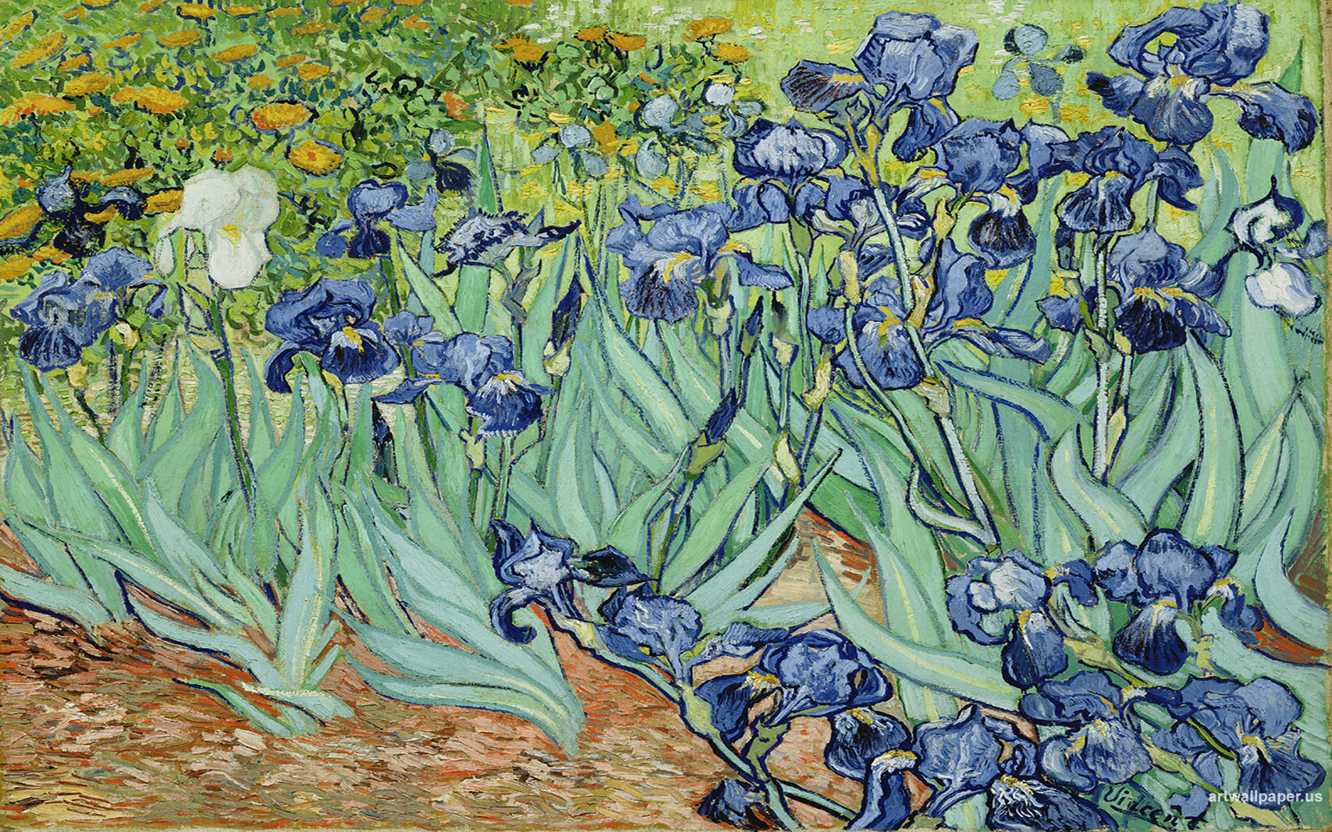 Drawn wallpapers   Paintings Painting of Vincent Van Gogh   Flowers 1920x1200
