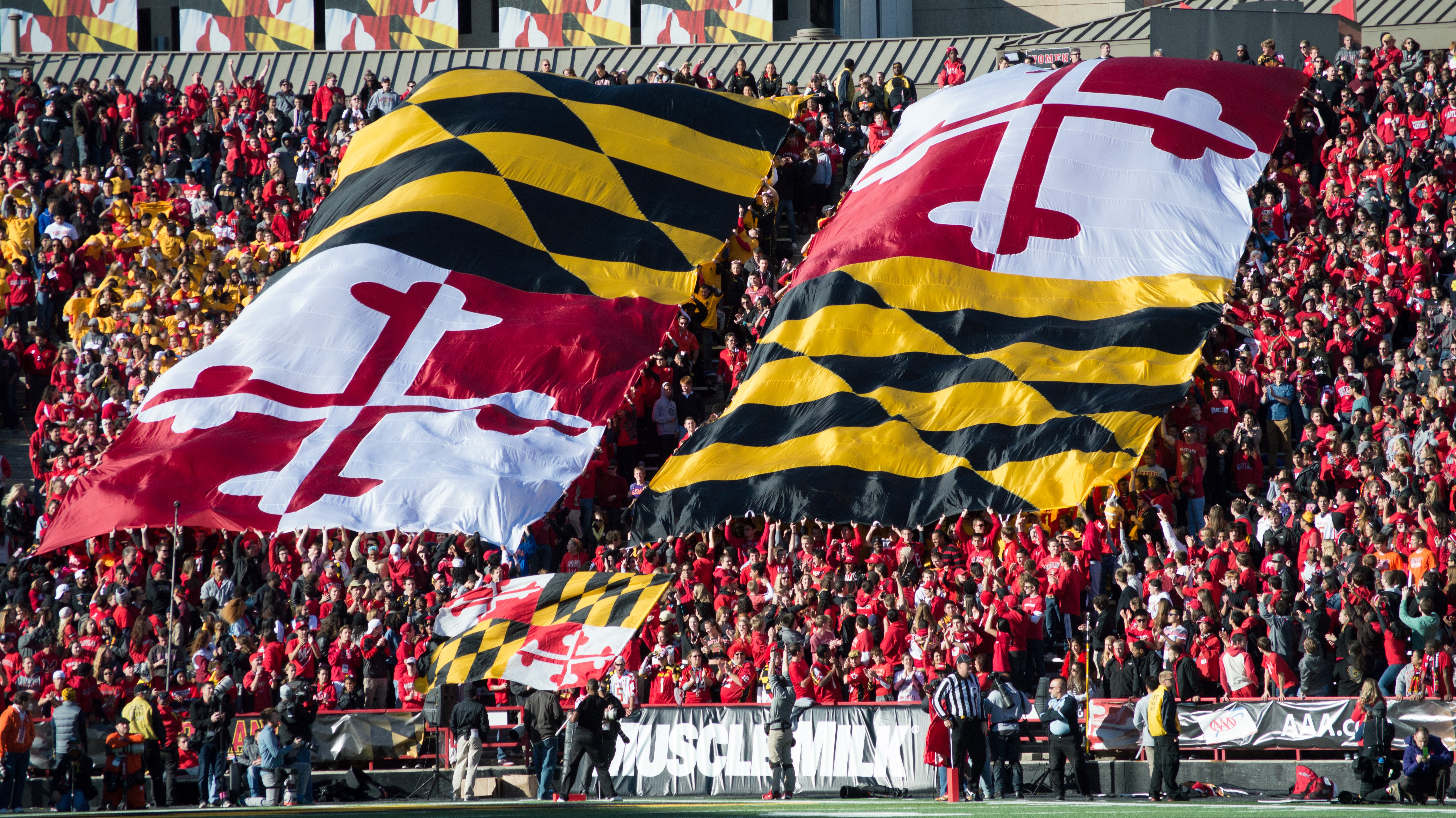 MARYLAND TERRAPINS college football wallpaper background 6016x3382