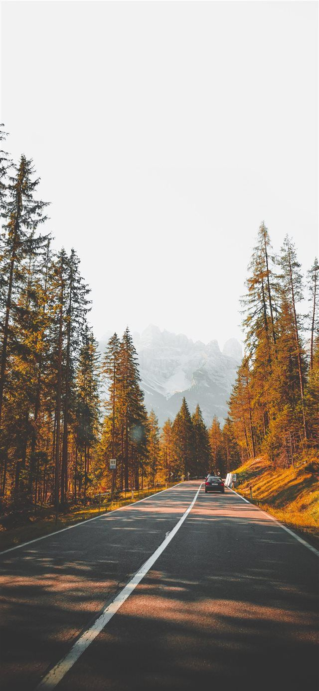 South Tyrol 1 iPhone X wallpaper nature street outdoor 640x1385