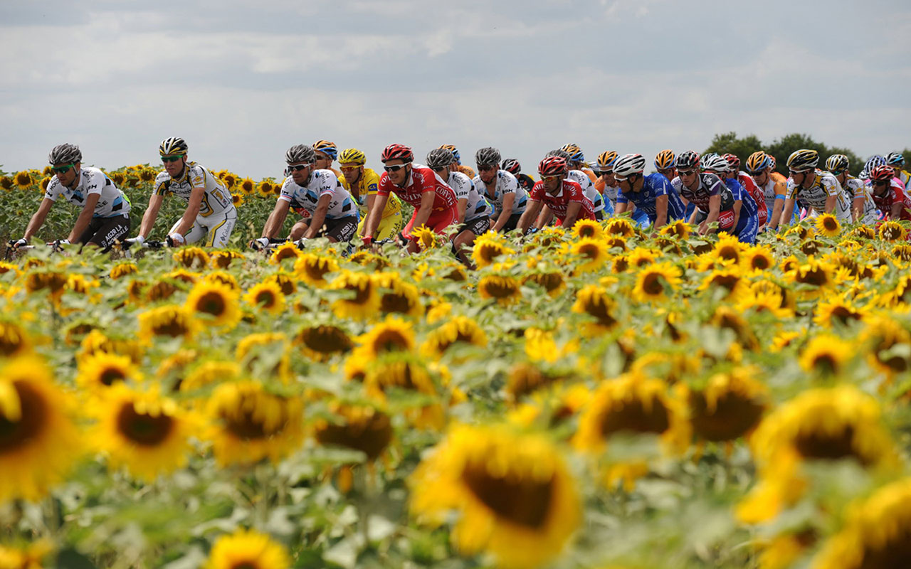 description sports wallpapers tour de france cycling 7 tour de france 1280x800