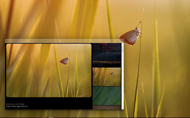 Chrome OS Wallpapers   Chrome Web Store 640x400
