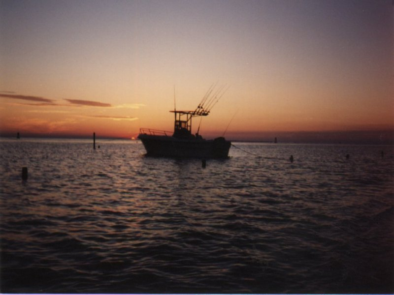 Offshore Fishing Wallpaper httpwwwhuntstatscomfishingwallpaper 800x600