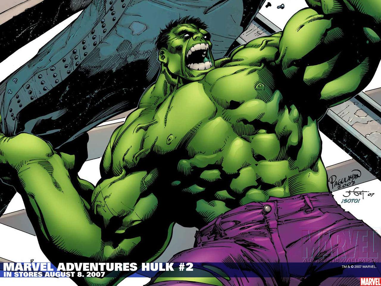 Hulk   The Incredible Hulk Wallpaper 14044617 1280x960