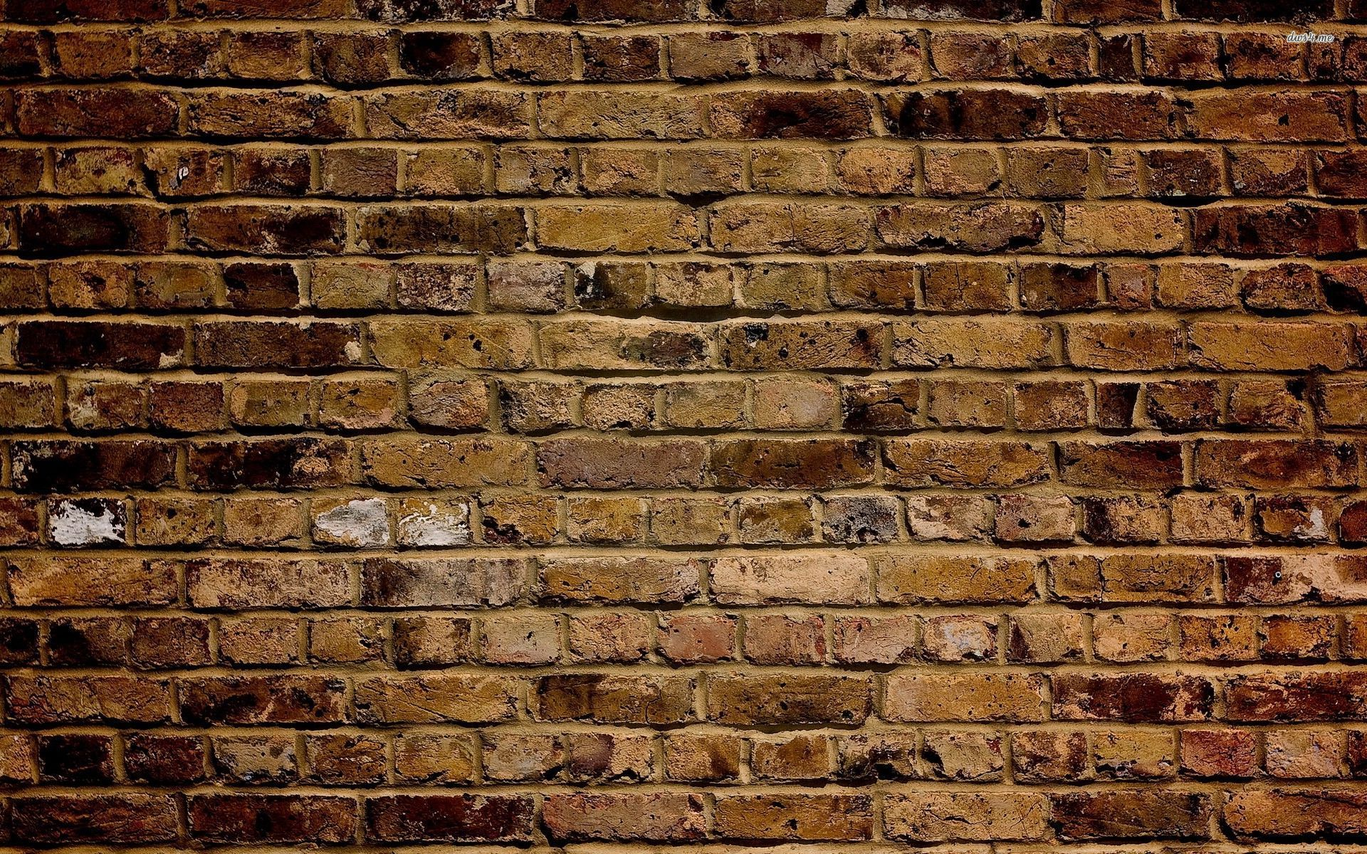 Brick Wall Wallpaper 2560x1600 More46 Background Brick Wall Jpg 1920x1200