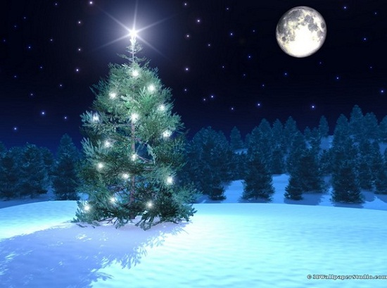 Beautiful Desktop Wallpapers 3d Christmas   ImgHD Browse and 550x409