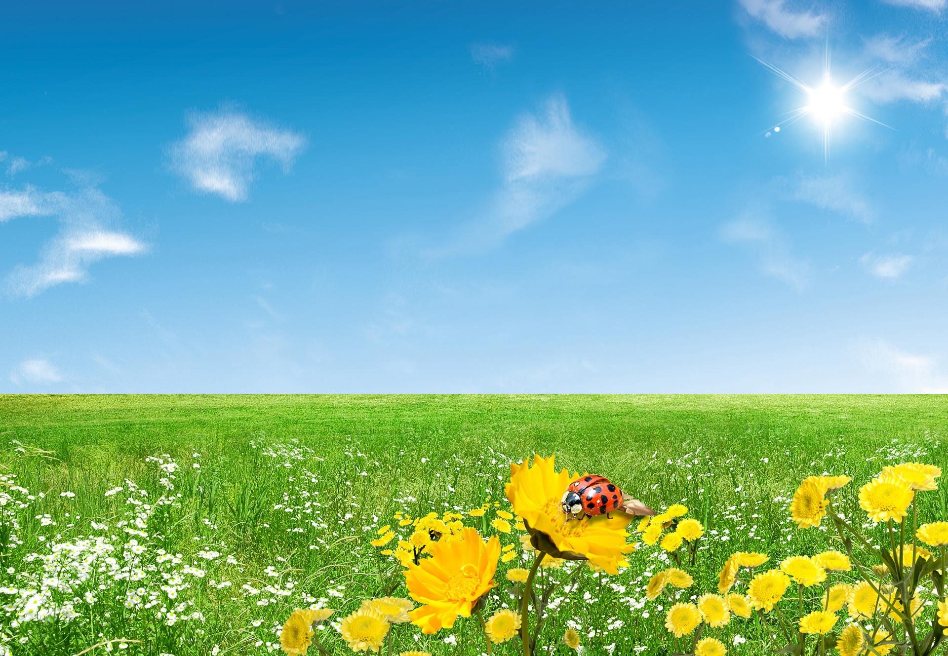 free spring desktop wallpaper MEMEs 1920x1329
