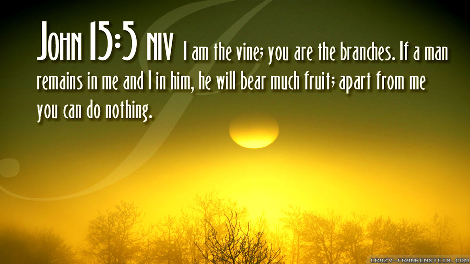 BIBLE VERSES quote text poster bible verses g wallpaper background 1920x1080
