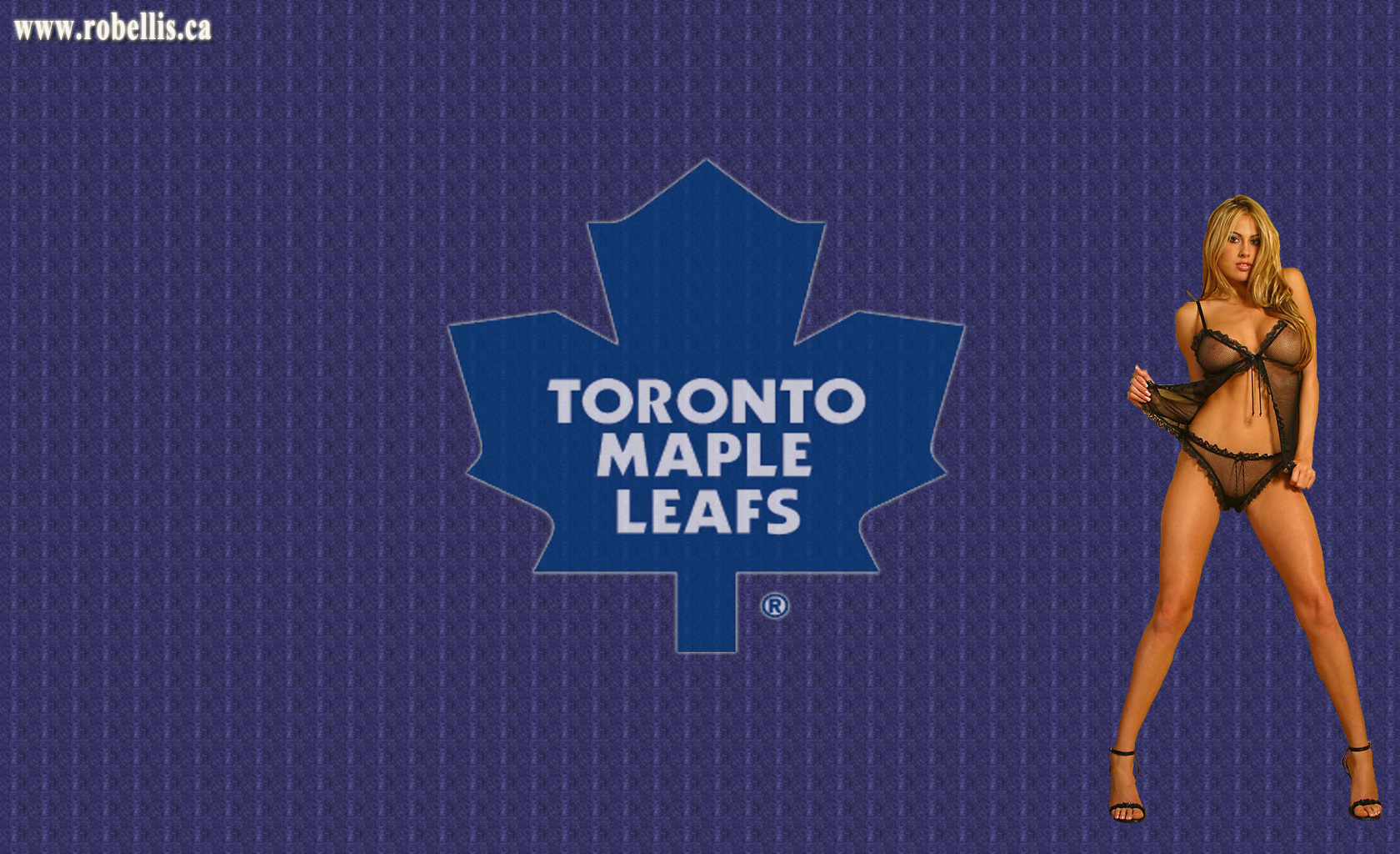 Toronto Maple Leafs wallpapers Toronto Maple Leafs background 1680x1024