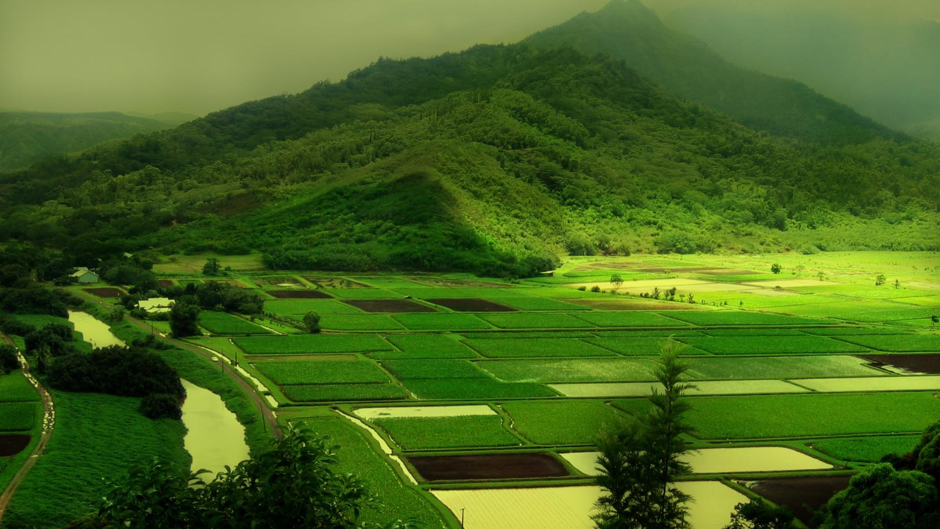Green Mountain Nature HD Wallpaper Wallsevcom   Download HD 1920x1080