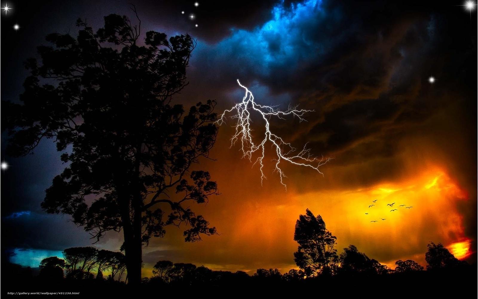 Download wallpaper storm lightning Trees desktop wallpaper in 1600x1000