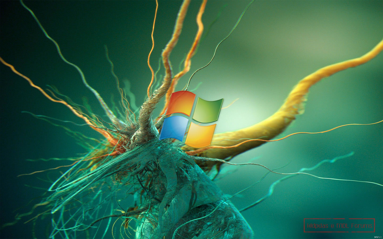 Bing Wallpaper App Windows 8 - WallpaperSafari