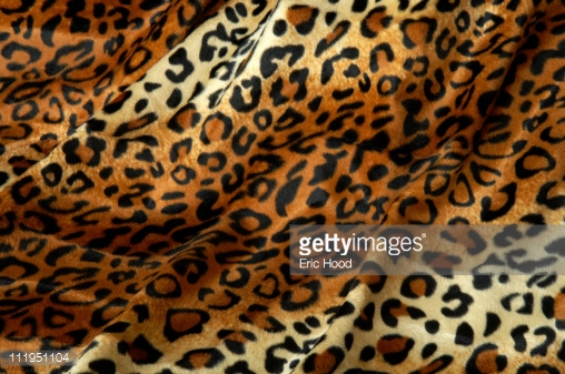 Leopard Print Fabric Faux Fur Background Stock Photo Getty Images 508x337