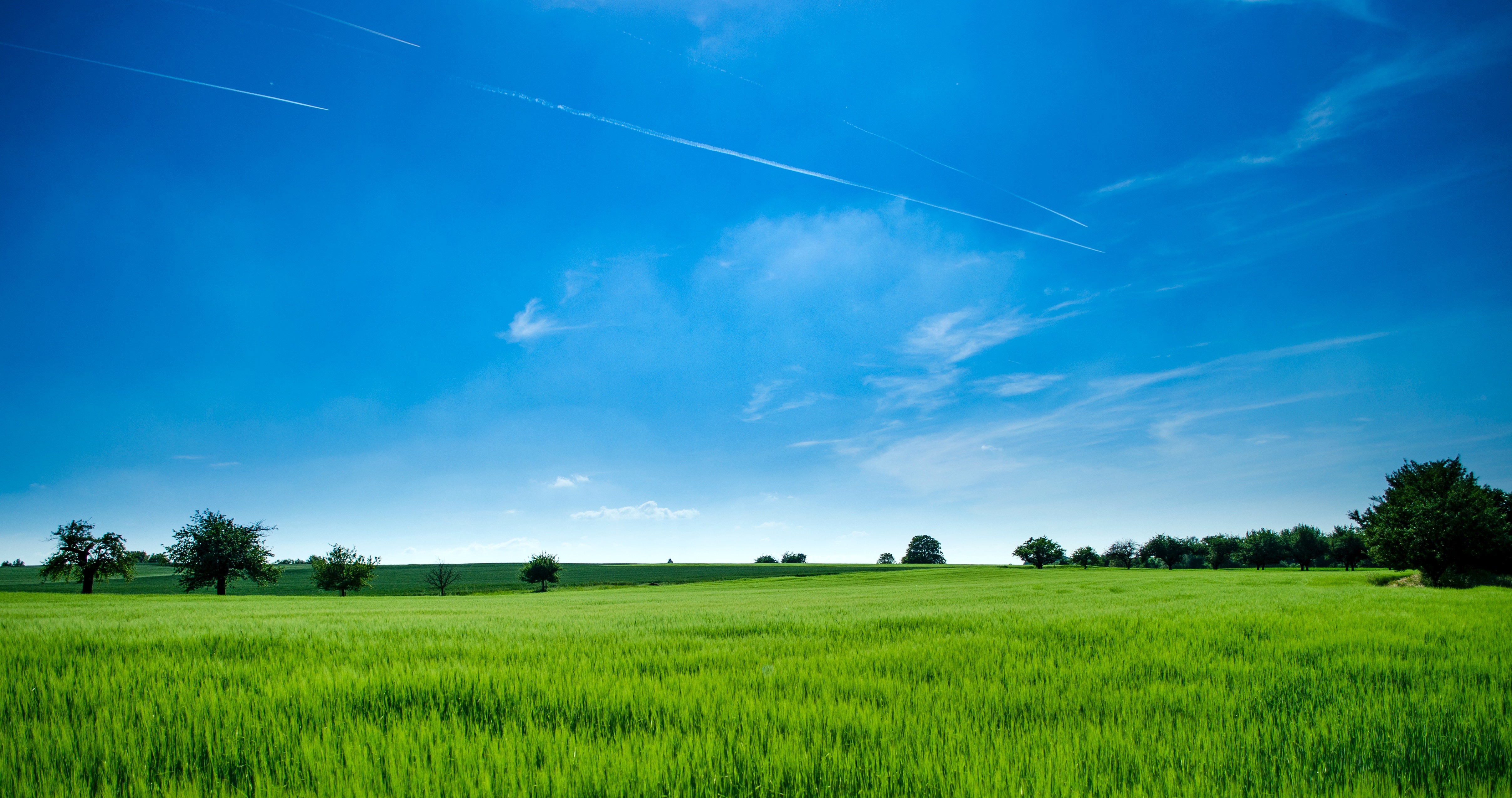 Green Field Transparent Background PNG PNG Arts 4831x2548