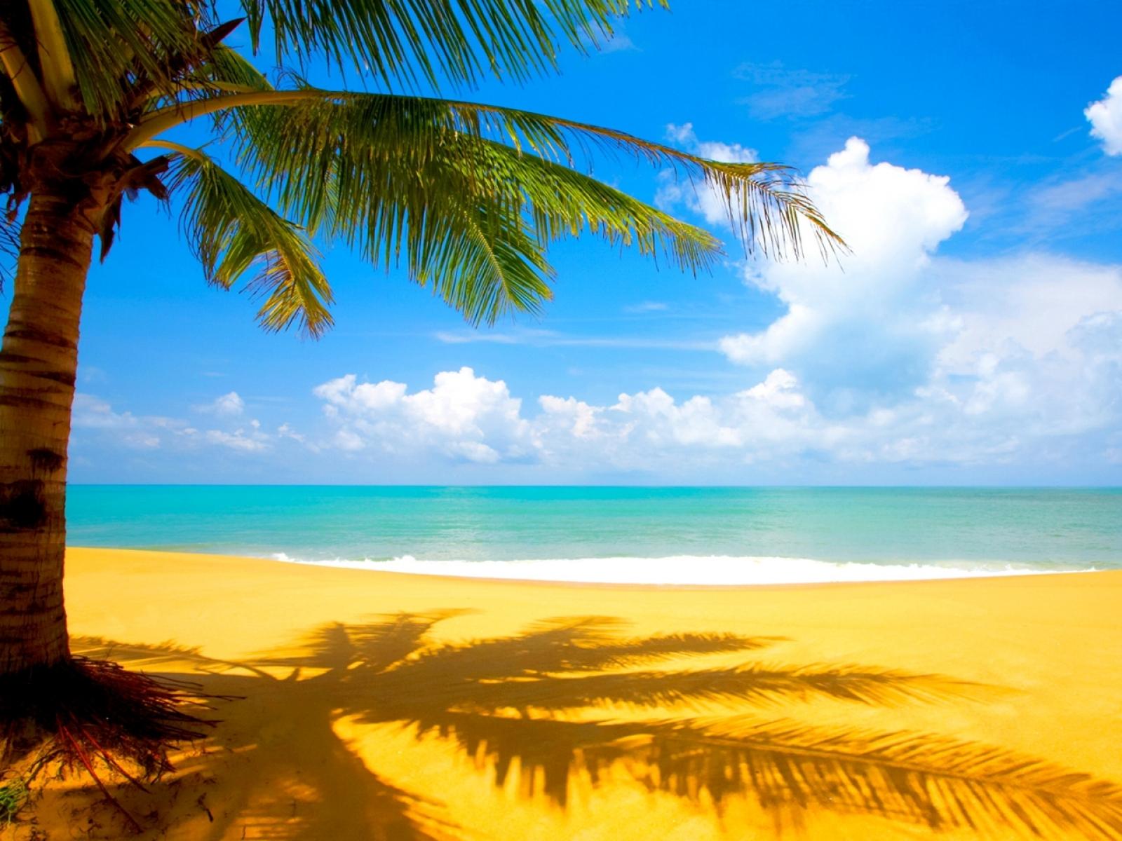 Ocean Beach HD Wallpapers 1600x1200