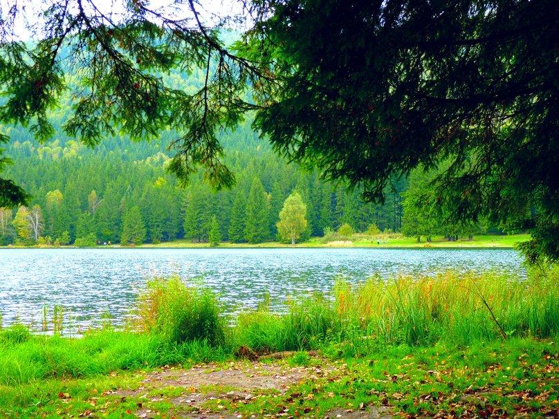 lago santa ana fondo de pantalla   ForWallpapercom 808x606