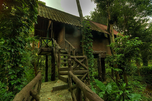 Free Download Top 20 Beautiful And Amazing Tree House
