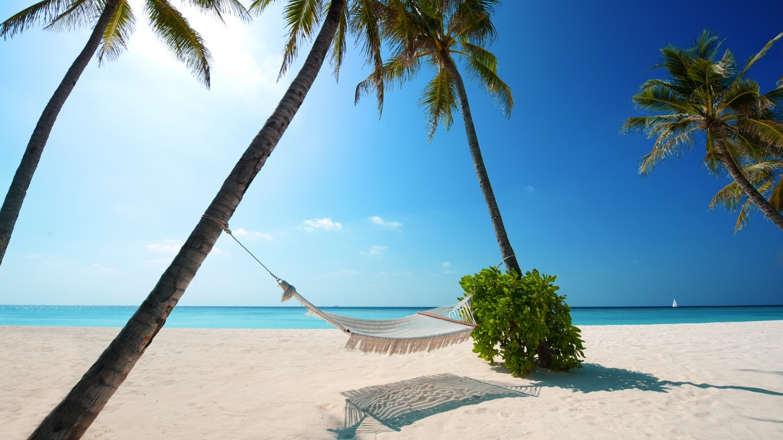Beach Screensavers And Wallpapers Beautiful Sunny Beach Wallpaper 1440x810