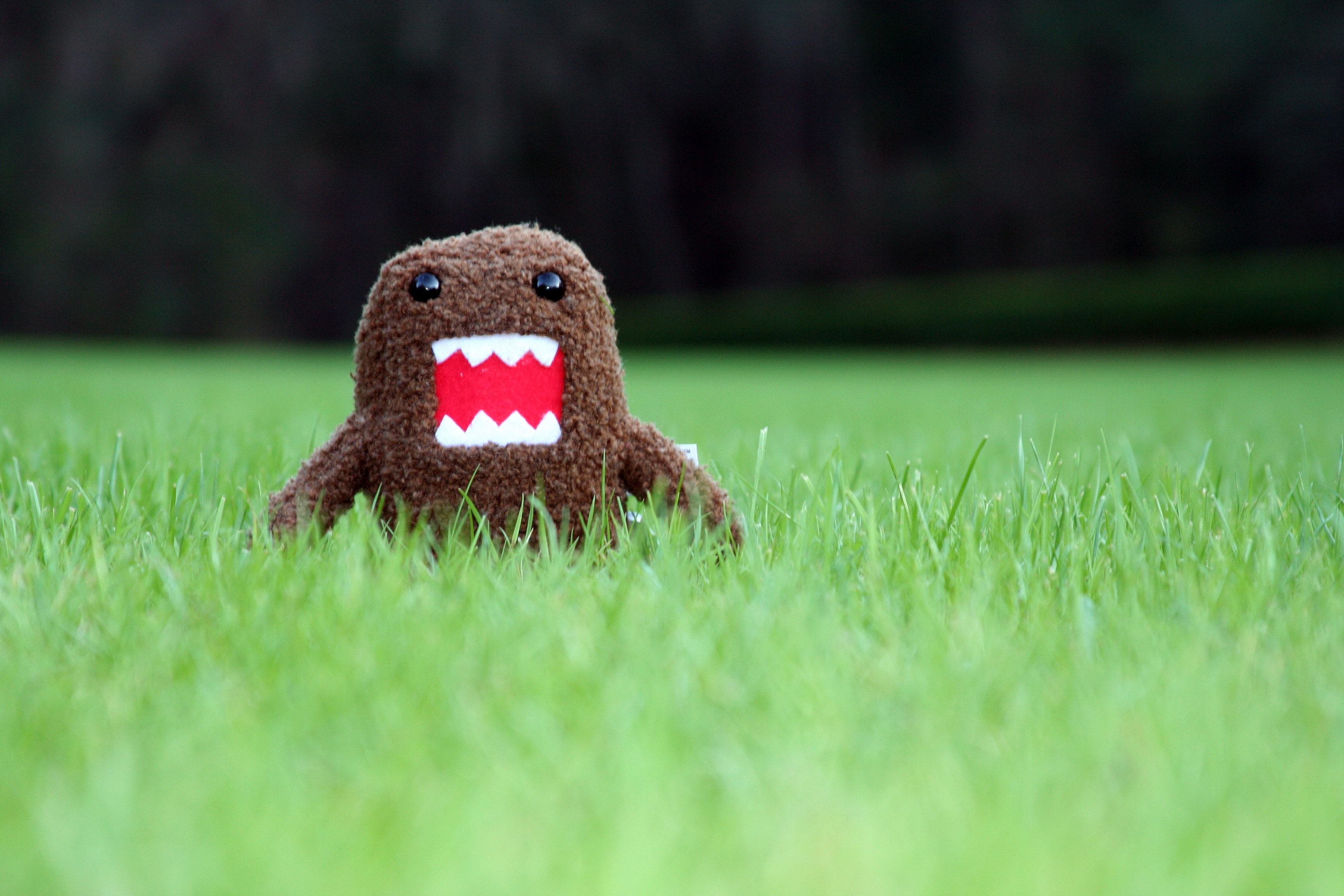 Pics Photos   Domo Cute Wallpaper 3456x2304