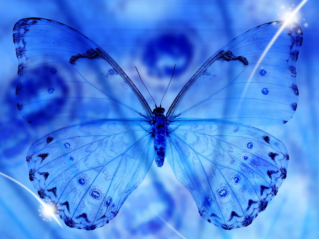 wallpaper Blue Butterfly Art Wallpapers 1024x768