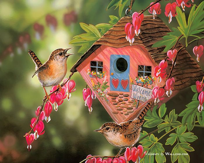 Bird Paintings Cute little birds with their precious house   Wallcoo 700x560