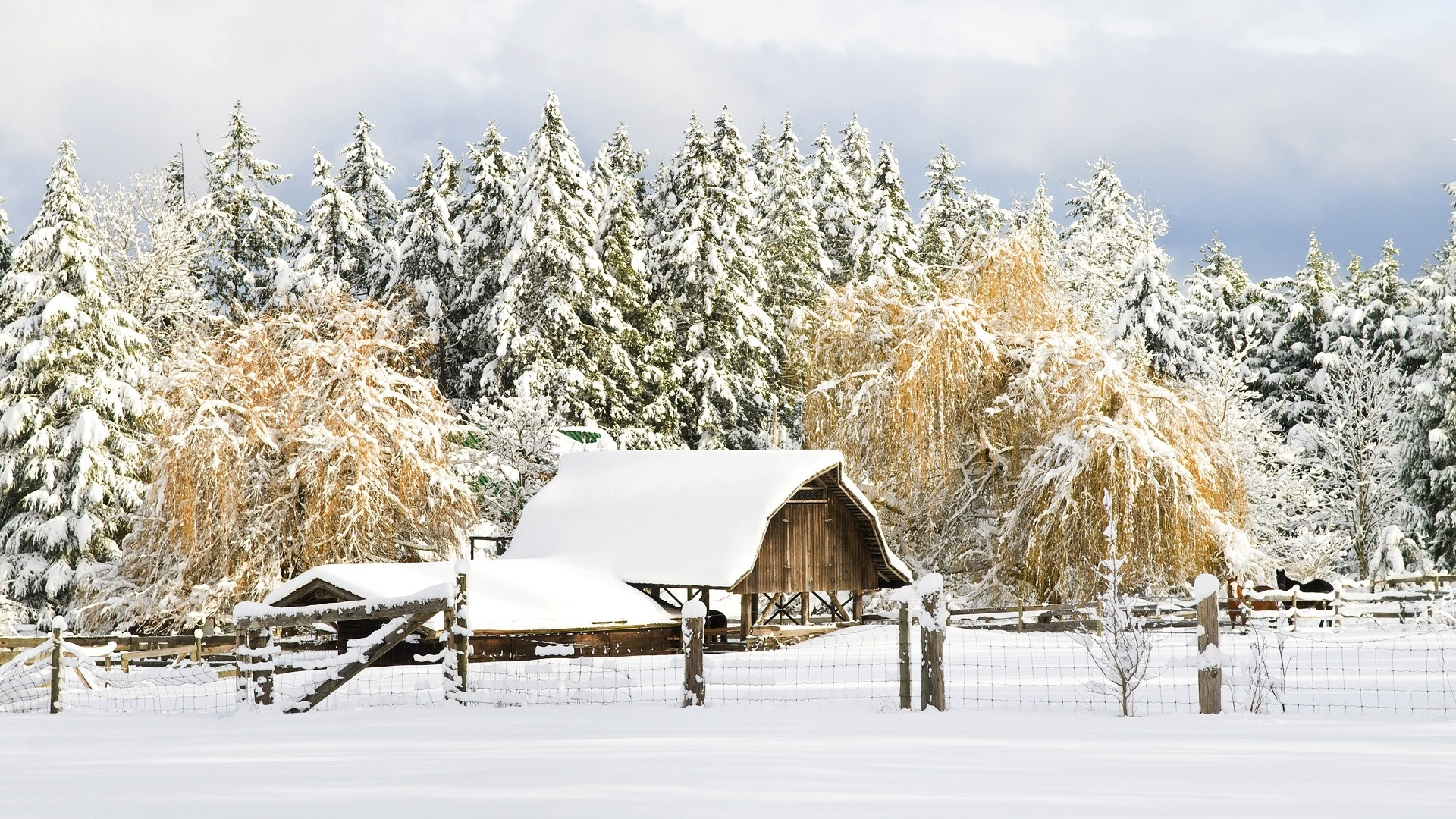 1920x1080 nature snow world country christmas british columbia barn 1920x1080