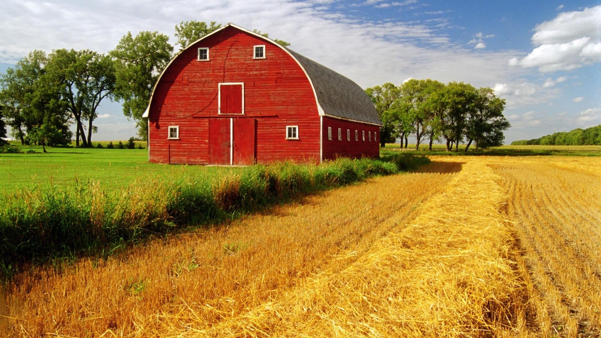 barn rustic farm landscapes fields crop grass sky clouds wallpaper 1920x1080