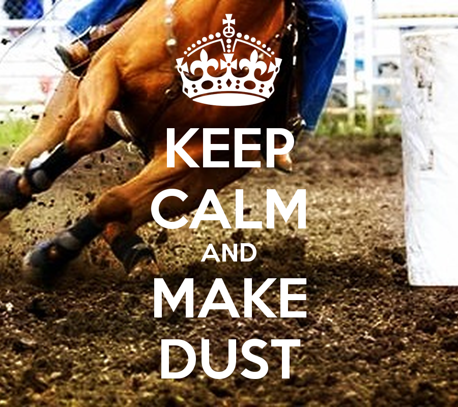 KEEP CALM AND MAKE DUST   KEEP CALM AND CARRY ON Image Generator 900x800