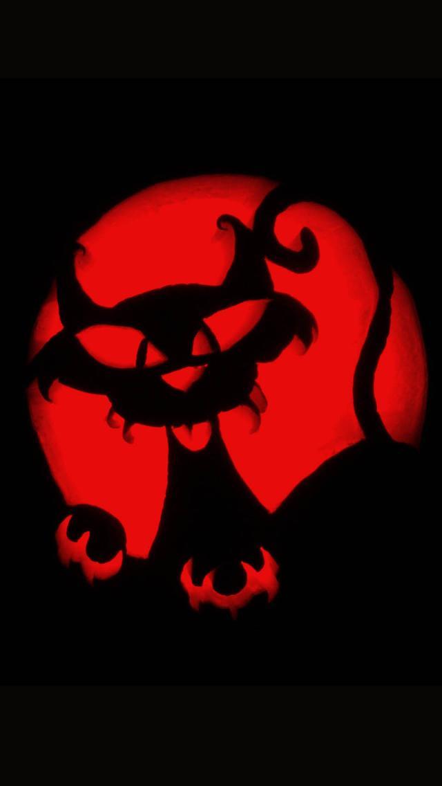 Crazy Cat Pumpkin Carving Halloween iPhone 5 Wallpaper iPod 640x1136