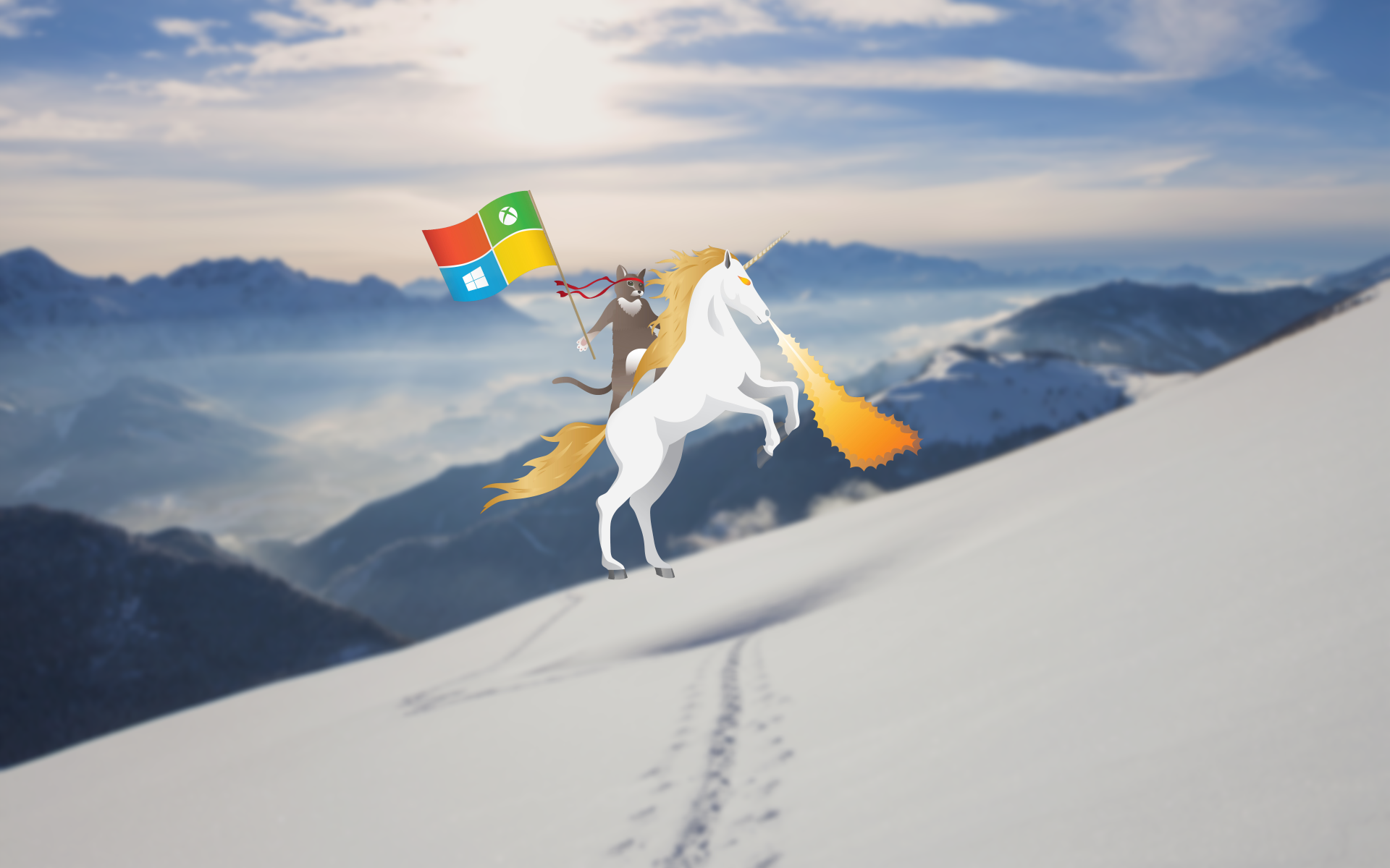 Here are a bunch of Windows 10 Ninja Cat wallpapers   Microsoft News 1920x1200