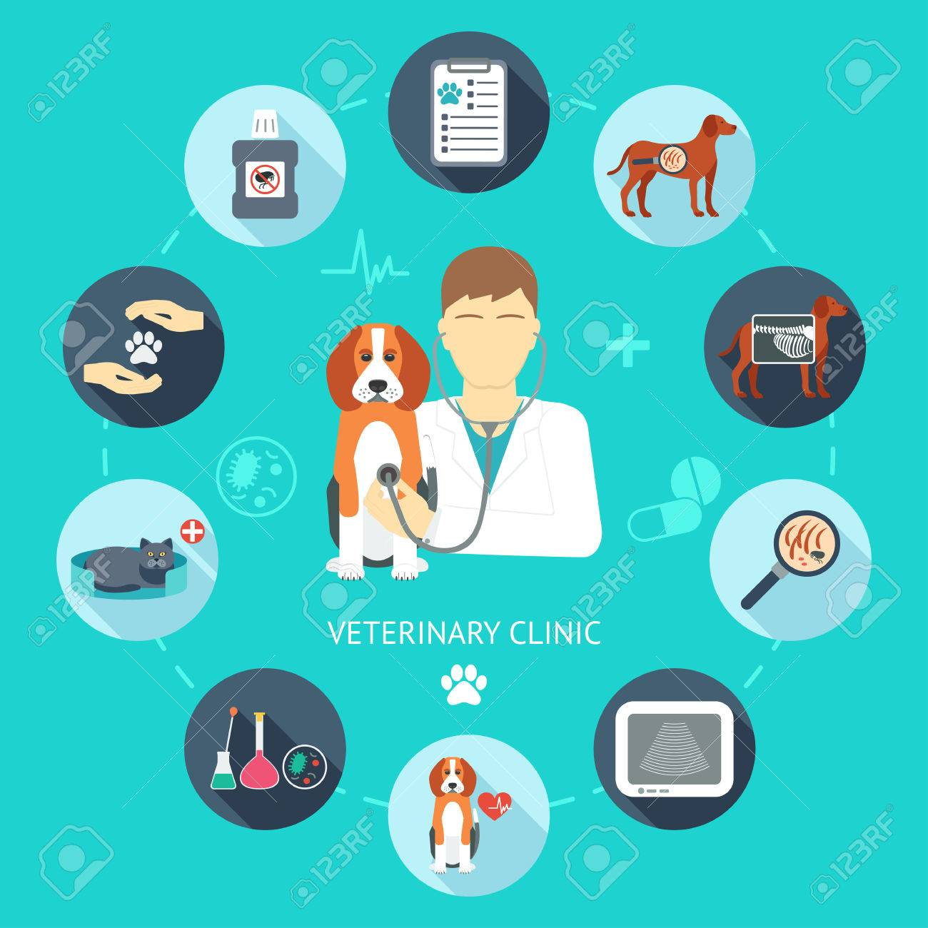 Veterinary Flat Icon Set Veterinary Banner Background Poster 1300x1300