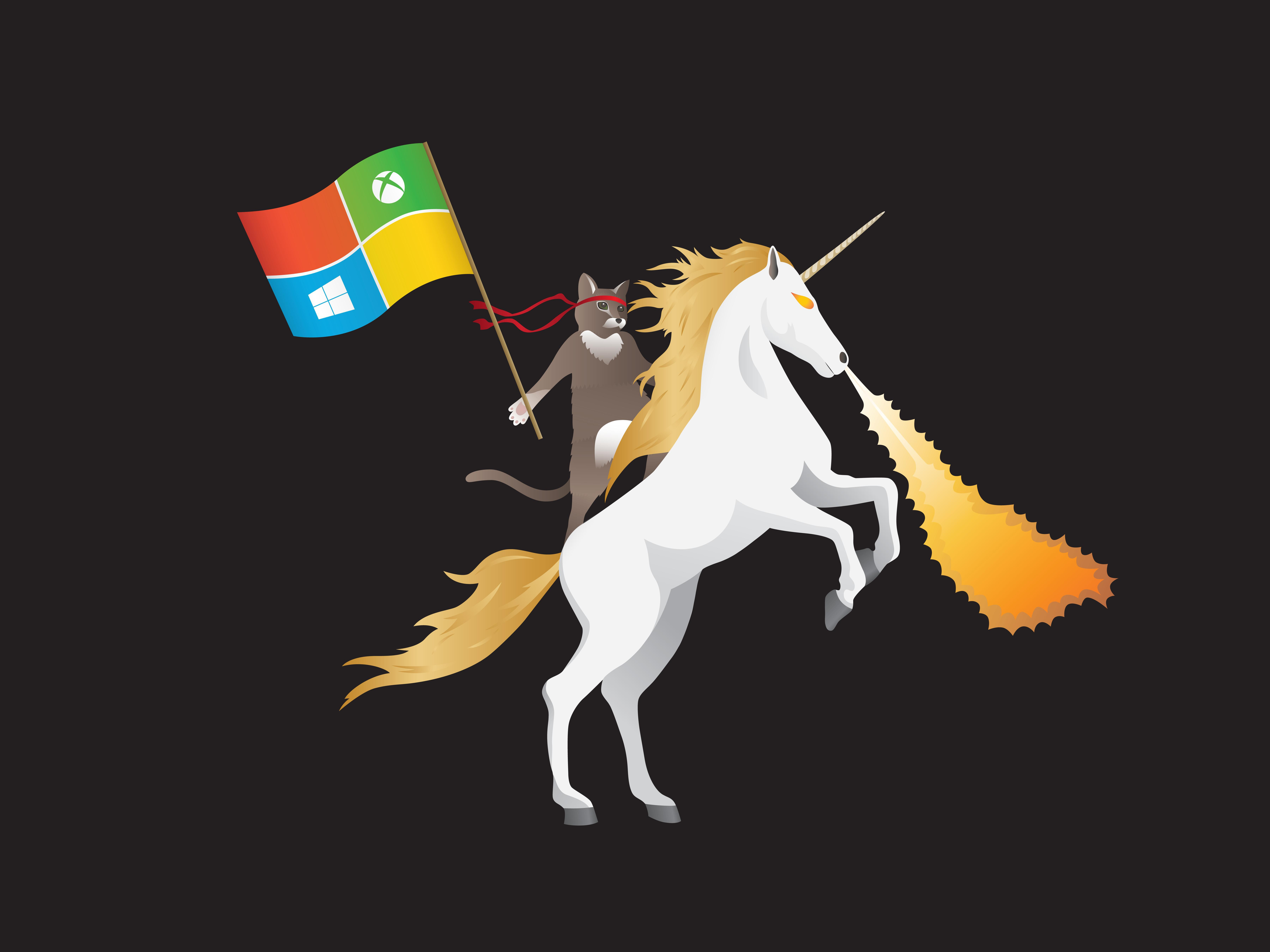 windows,  microsoft, anniversary, update, кот  № 1182272 загрузить