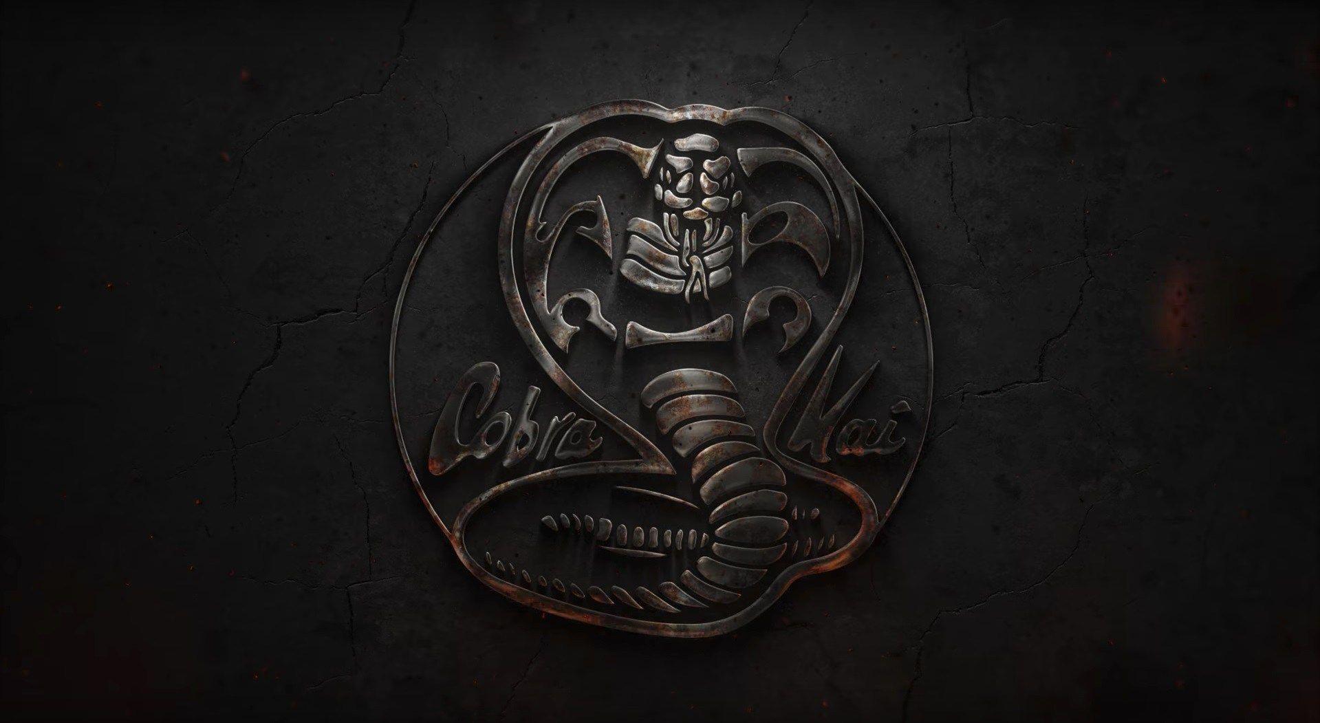 Cobra Kai Wallpapers   Top Cobra Kai Backgrounds 1919x1051