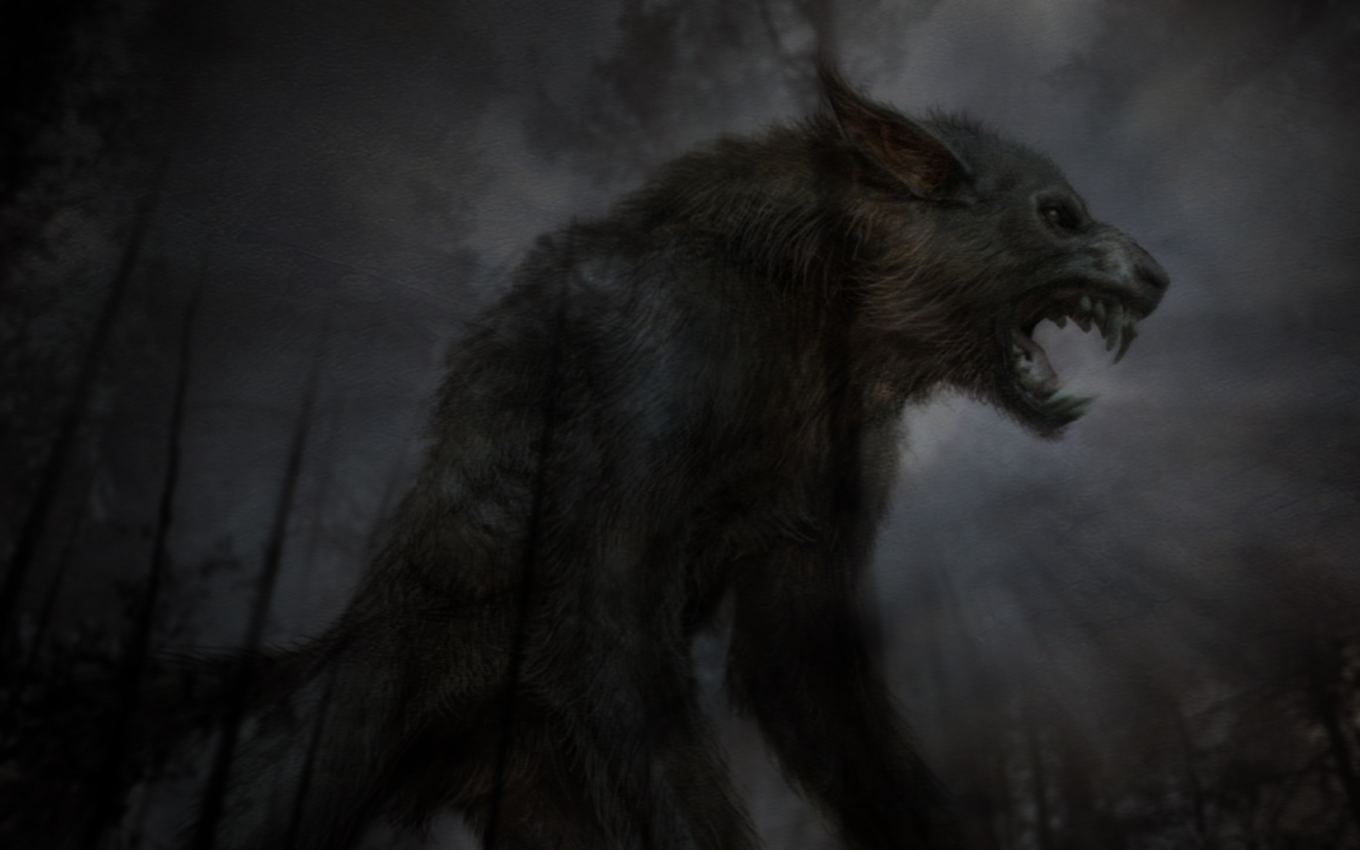 Beast Black Wolf Exclusive HD Wallpapers 2690 1920x1200