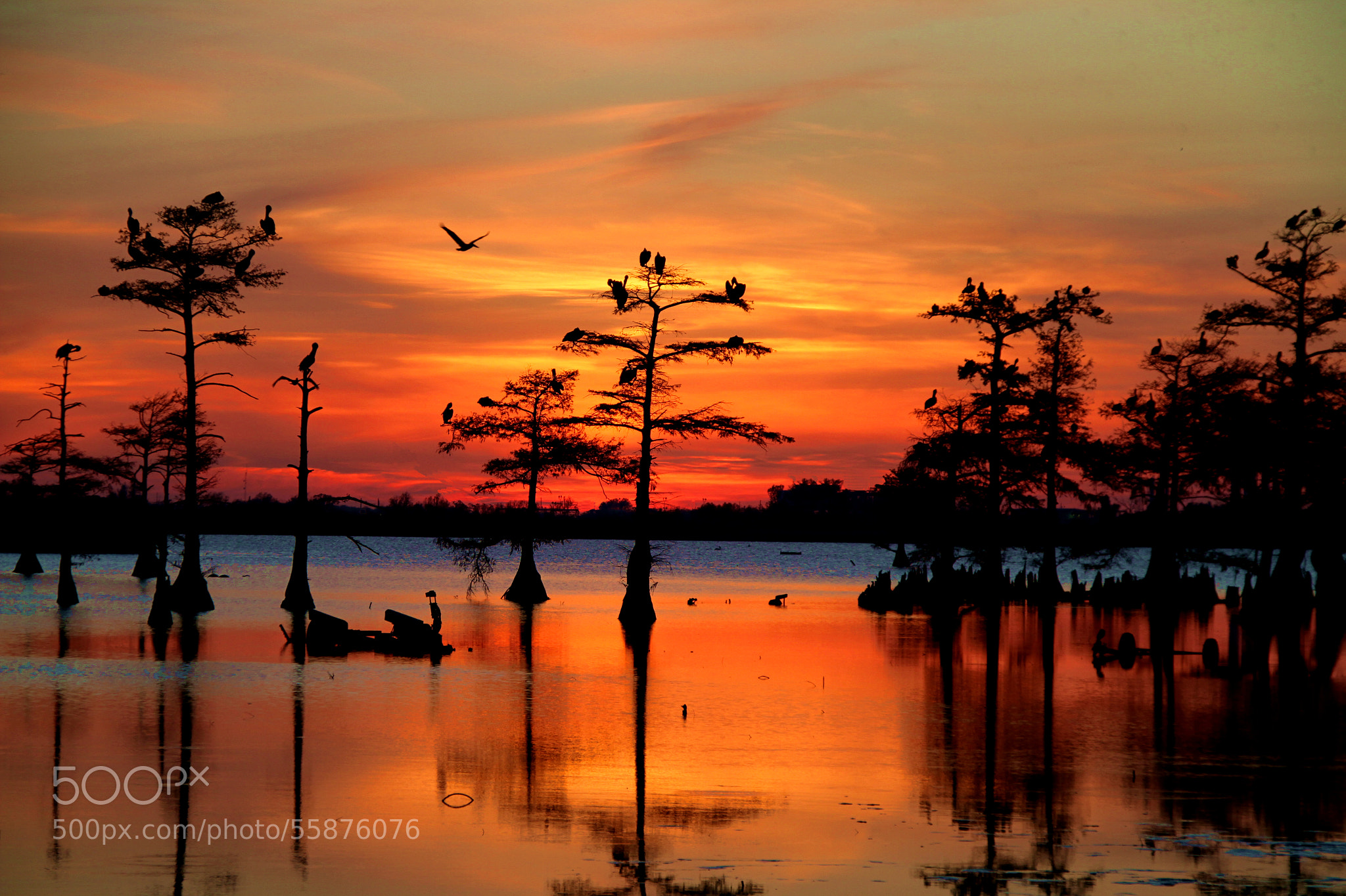 Sunset on the Bayou wallpapers 2048x1365