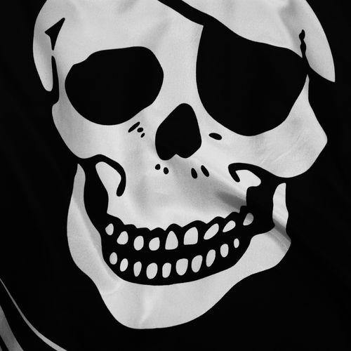 HD Jolly Roger Skull Wallpaper 500x500
